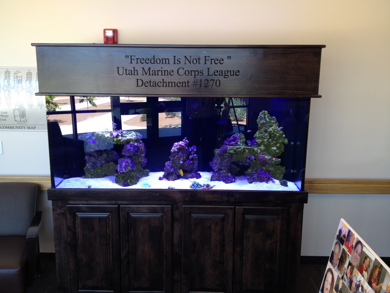 Southern Utah Veterans Home Hosts Dedication of Donated Salt Water Aquarium