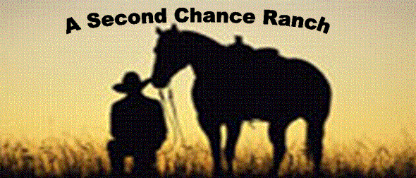 Second Chance Ranch Utah Division